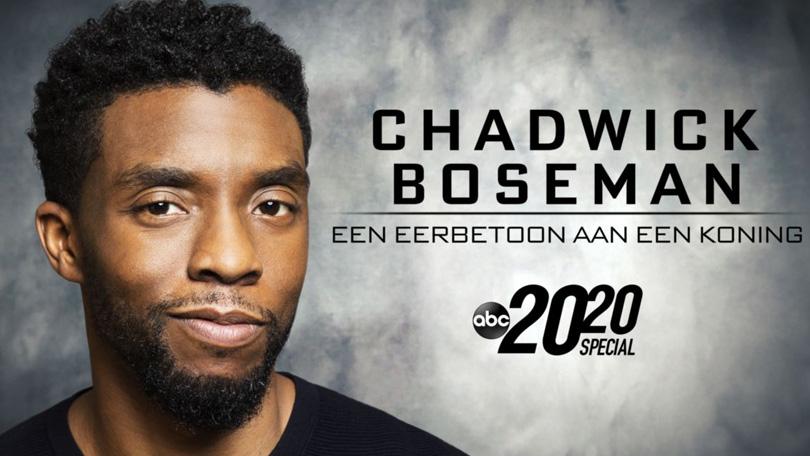 Chadwick Boseman Disney Plus