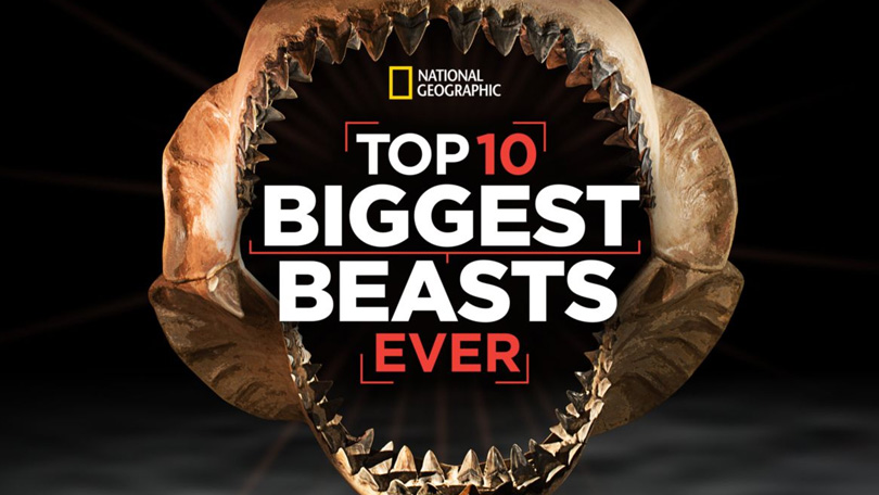 Top 10 Biggest Beasts Ever Disney Plus